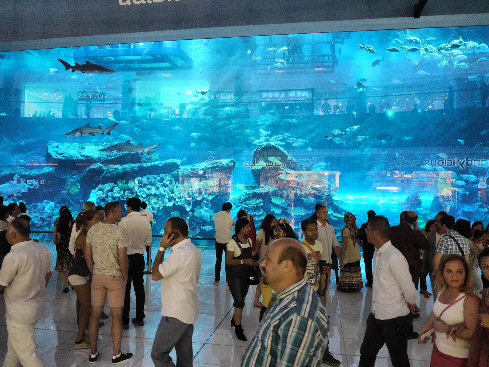 Strolling Past the Aquarium Inside Dubai Mall - Dubai, United Arab Emirates