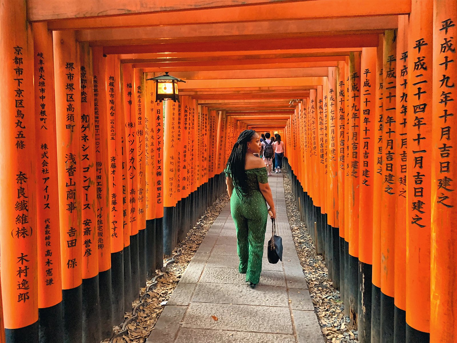 Day Trip: Wandering Through Kyoto's Most Famous Torii Gates - Tokyo, Japan