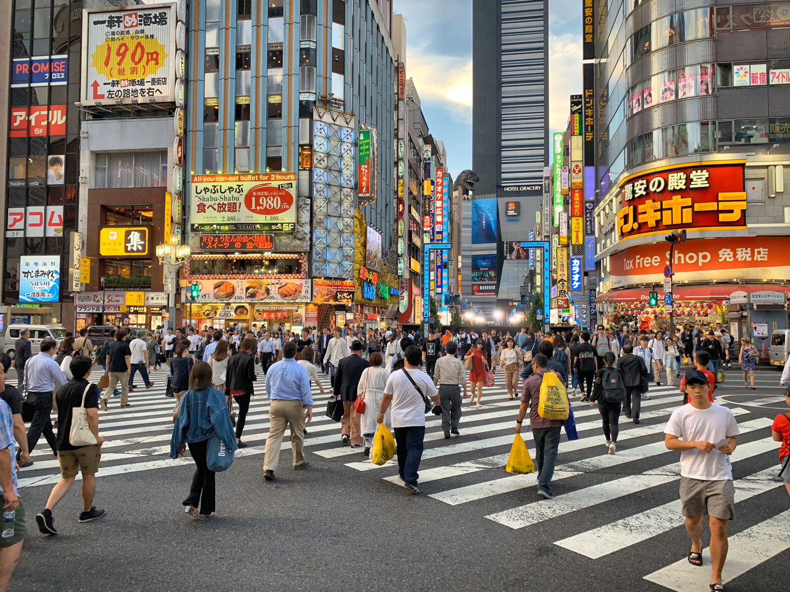 Shop til you Drop! Roam the Busy Streets of Shinjuku - Tokyo, Japan